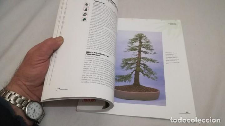 Libros de segunda mano: BONSAIS / GORDON OWEN / EDILUPA - Foto 12 - 194249078