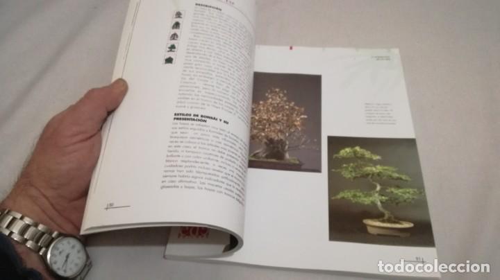 Libros de segunda mano: BONSAIS / GORDON OWEN / EDILUPA - Foto 15 - 194249078
