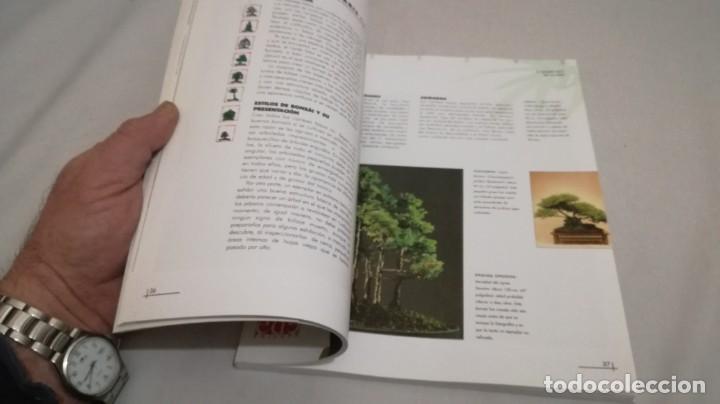 Libros de segunda mano: BONSAIS / GORDON OWEN / EDILUPA - Foto 16 - 194249078