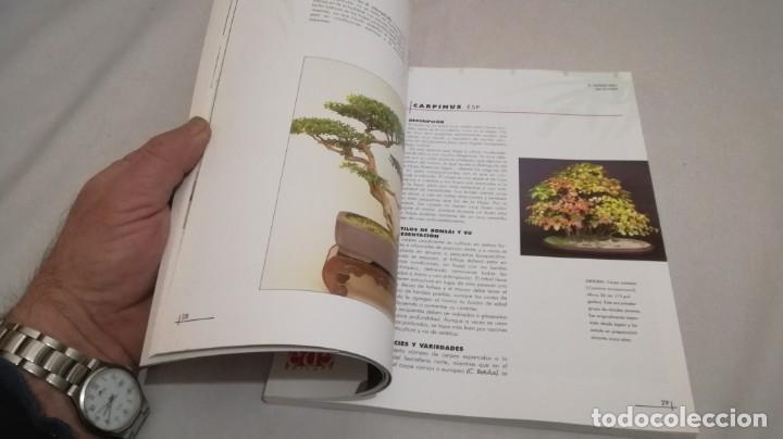 Libros de segunda mano: BONSAIS / GORDON OWEN / EDILUPA - Foto 17 - 194249078