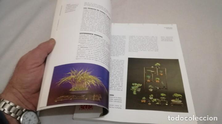 Libros de segunda mano: BONSAIS / GORDON OWEN / EDILUPA - Foto 20 - 194249078