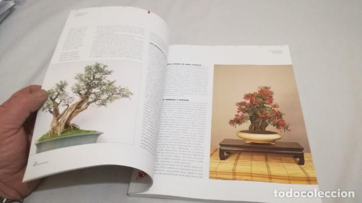 Libros de segunda mano: BONSAIS / GORDON OWEN / EDILUPA - Foto 21 - 194249078