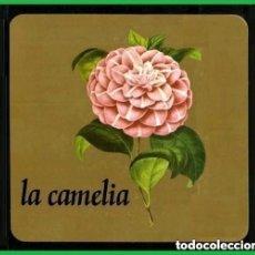 Libros de segunda mano: CAMELIA. RECOPILACION DE TRABAJOS SOBRE LA CAMELIA. FLORES. PLANTAS. D. PONTEVEDRA. GALICIA.. Lote 216613466