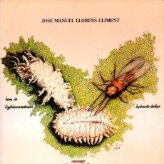 Libros de segunda mano: LLORENS CLIMENT: HOMÓPTERA I COCHINILLAS DE LOS CÍTRICOS Y SU CONTROL BIOLÓGICO (PISA, 1990). Lote 160197858