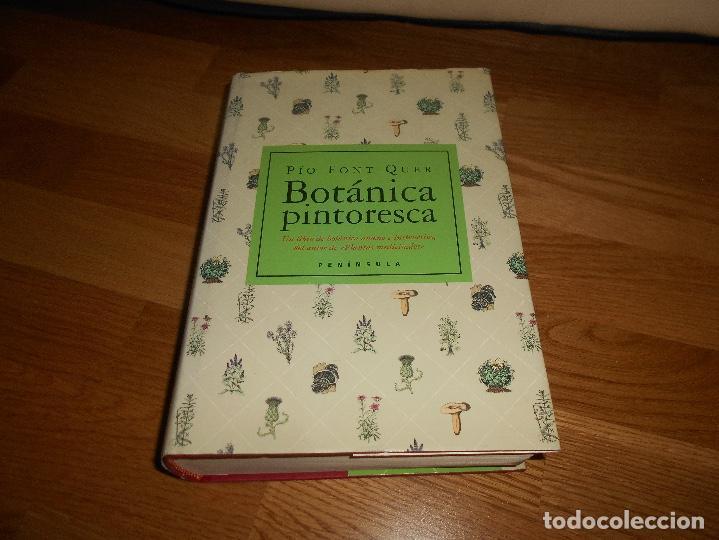 BOTÁNICA PINTORESCA PIO FONT QUER 2003 PRIMERA EDICION PENINSULA DE RAMON SOPENA 1958 RARO (Libros de Segunda Mano - Ciencias, Manuales y Oficios - Biología y Botánica)