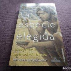 Libros de segunda mano: LA ESPECIE ELEGIDA - JUAN LUIS ARSUAGA. Lote 144757586