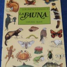 Libros de segunda mano: GUÍA PRÁCTICA ILUSTRADA DE LA FAUNA - EDITORIAL BLUME (1984). Lote 145244850