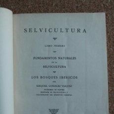Libros de segunda mano: SELVICULTURA. LIBRO PRIMERO. FUNDAMENTOS NATURALES DE LA SELVICULTURA. LOS BOSQUES IBÉRICOS.. Lote 145511854