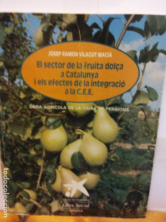 STQ.JOSEP RAMON VILAGUT.EL SECTOR DE LA FRUITA DOLÇA A CATALUNYA..... (Libros de Segunda Mano - Ciencias, Manuales y Oficios - Biología y Botánica)