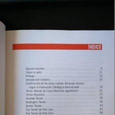 Libros de segunda mano - EL GRAN LIBRO DE LOS TERRIER. SÁNCHEZ FERNÁNDEZ, JAVIER. 1997 - 145798678