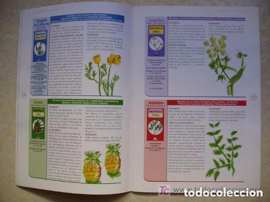 Libros de segunda mano: El ABC de las plantas. Guía práctica de fitoterapia. Arkocapsula -VER FOTOS - Foto 2 - 146597878
