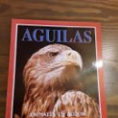 Libros de segunda mano: AGUILAS. ANIMALES EN ACCIÓN. ED. ANAYA.. Lote 146664666