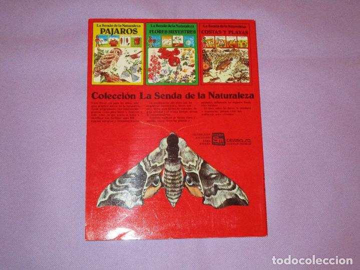 Gebrauchte Bücher: LA SENDA DE LA NATURALEZA ( INSECTOS ) - EDICIONES PLESA - SM EDICIONES - Foto 5 - 146769794
