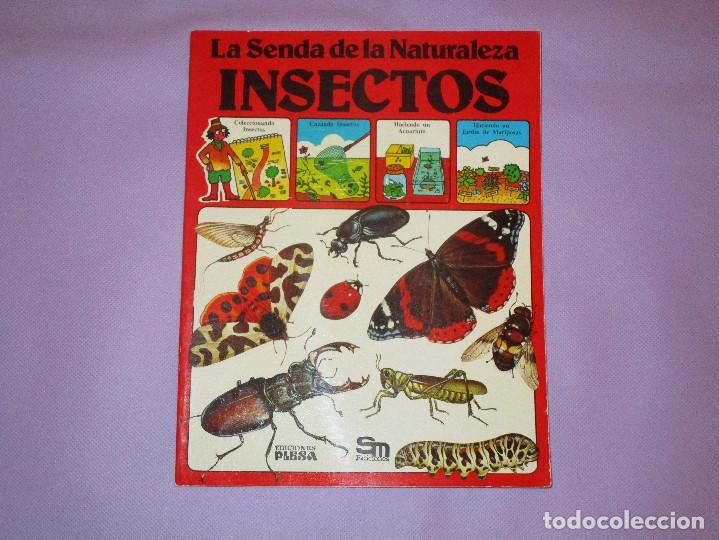 LA SENDA DE LA NATURALEZA ( INSECTOS ) - EDICIONES PLESA - SM EDICIONES (Gebrauchte Bücher - Wissenschaften, Handbücher und Berufe - Biologie und Botanik)
