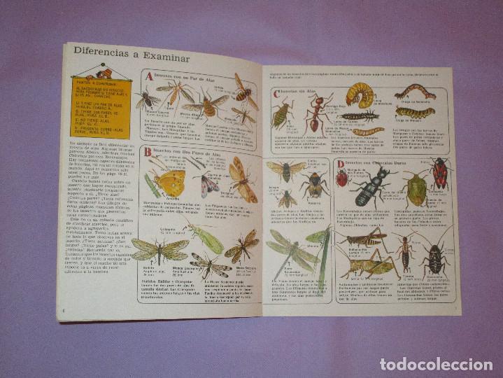 Gebrauchte Bücher: LA SENDA DE LA NATURALEZA ( INSECTOS ) - EDICIONES PLESA - SM EDICIONES - Foto 2 - 146769794