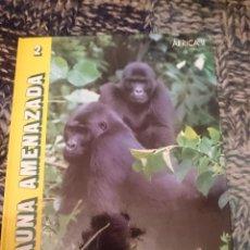 Libros de segunda mano: FAUNA AMENAZADA N 2 - AFRICA II - ED. ANAYA. Lote 146812314