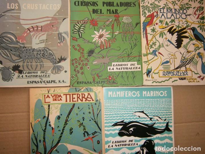 LOTE LIBROS DE LA NATURALEZA CRUSTACEOS POBLADORES DE MAR MUNDO ALADO MAMIFEROS MARINOS VIDA TIERRA (Libros de Segunda Mano - Ciencias, Manuales y Oficios - Biología y Botánica)