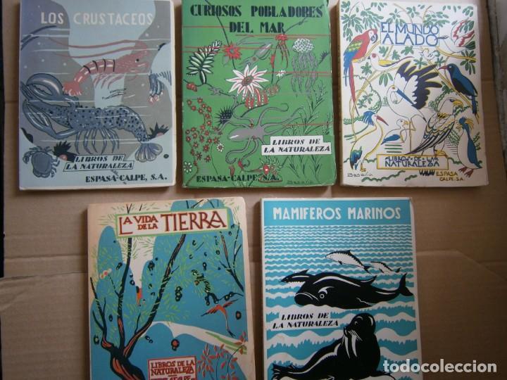 Libros de segunda mano: LOTE LIBROS DE LA NATURALEZA CRUSTACEOS POBLADORES DE MAR MUNDO ALADO MAMIFEROS MARINOS VIDA TIERRA - Foto 2 - 146870510