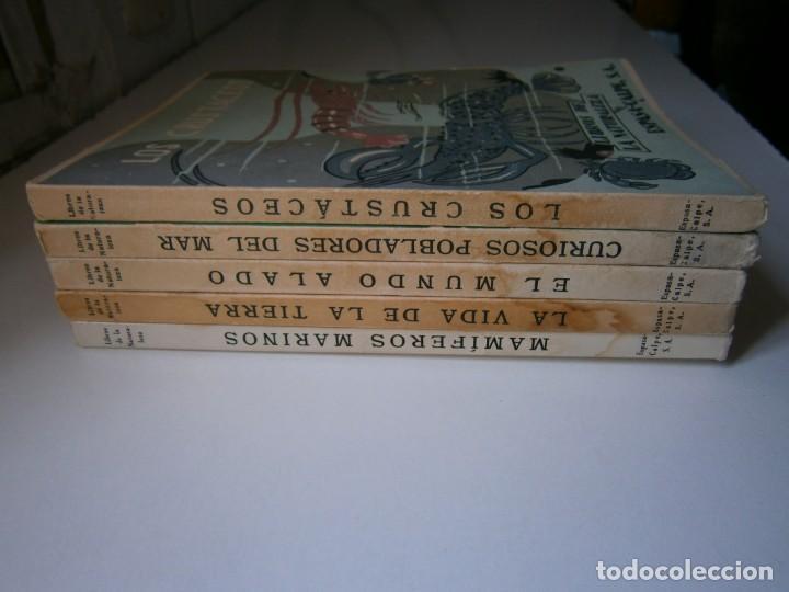 Libros de segunda mano: LOTE LIBROS DE LA NATURALEZA CRUSTACEOS POBLADORES DE MAR MUNDO ALADO MAMIFEROS MARINOS VIDA TIERRA - Foto 3 - 146870510