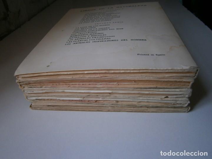 Libros de segunda mano: LOTE LIBROS DE LA NATURALEZA CRUSTACEOS POBLADORES DE MAR MUNDO ALADO MAMIFEROS MARINOS VIDA TIERRA - Foto 4 - 146870510
