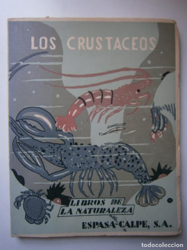 Libros de segunda mano: LOTE LIBROS DE LA NATURALEZA CRUSTACEOS POBLADORES DE MAR MUNDO ALADO MAMIFEROS MARINOS VIDA TIERRA - Foto 5 - 146870510