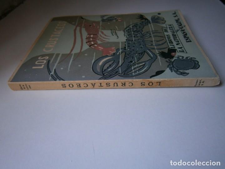 Libros de segunda mano: LOTE LIBROS DE LA NATURALEZA CRUSTACEOS POBLADORES DE MAR MUNDO ALADO MAMIFEROS MARINOS VIDA TIERRA - Foto 6 - 146870510
