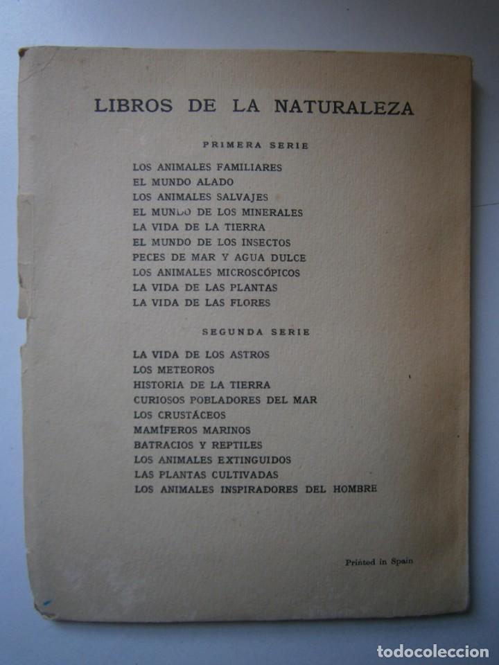 Libros de segunda mano: LOTE LIBROS DE LA NATURALEZA CRUSTACEOS POBLADORES DE MAR MUNDO ALADO MAMIFEROS MARINOS VIDA TIERRA - Foto 7 - 146870510