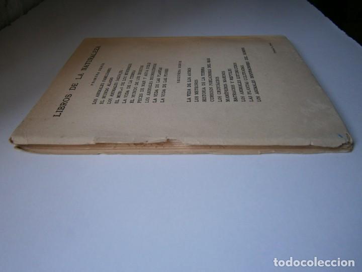 Libros de segunda mano: LOTE LIBROS DE LA NATURALEZA CRUSTACEOS POBLADORES DE MAR MUNDO ALADO MAMIFEROS MARINOS VIDA TIERRA - Foto 8 - 146870510