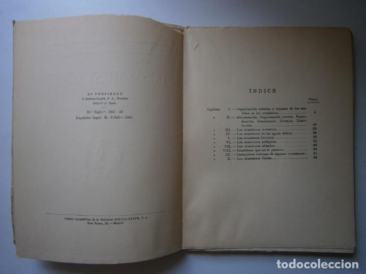 Libros de segunda mano: LOTE LIBROS DE LA NATURALEZA CRUSTACEOS POBLADORES DE MAR MUNDO ALADO MAMIFEROS MARINOS VIDA TIERRA - Foto 10 - 146870510