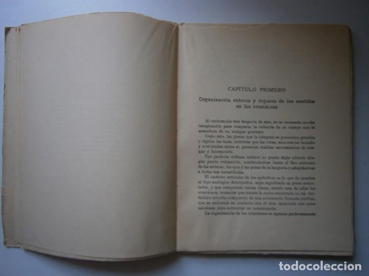 Libros de segunda mano: LOTE LIBROS DE LA NATURALEZA CRUSTACEOS POBLADORES DE MAR MUNDO ALADO MAMIFEROS MARINOS VIDA TIERRA - Foto 11 - 146870510