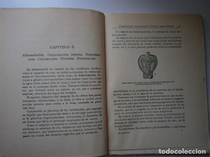 Libros de segunda mano: LOTE LIBROS DE LA NATURALEZA CRUSTACEOS POBLADORES DE MAR MUNDO ALADO MAMIFEROS MARINOS VIDA TIERRA - Foto 17 - 146870510