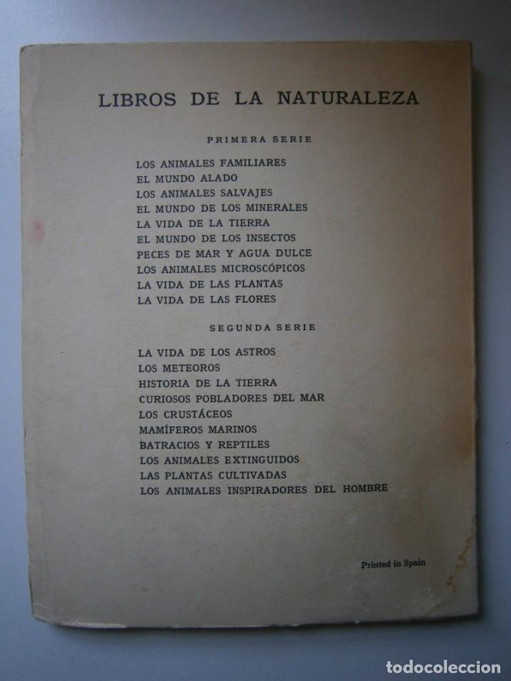Libros de segunda mano: LOTE LIBROS DE LA NATURALEZA CRUSTACEOS POBLADORES DE MAR MUNDO ALADO MAMIFEROS MARINOS VIDA TIERRA - Foto 22 - 146870510