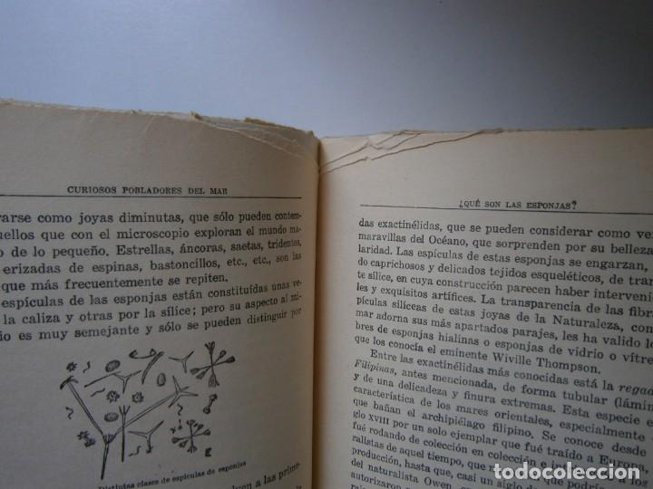 Libros de segunda mano: LOTE LIBROS DE LA NATURALEZA CRUSTACEOS POBLADORES DE MAR MUNDO ALADO MAMIFEROS MARINOS VIDA TIERRA - Foto 23 - 146870510