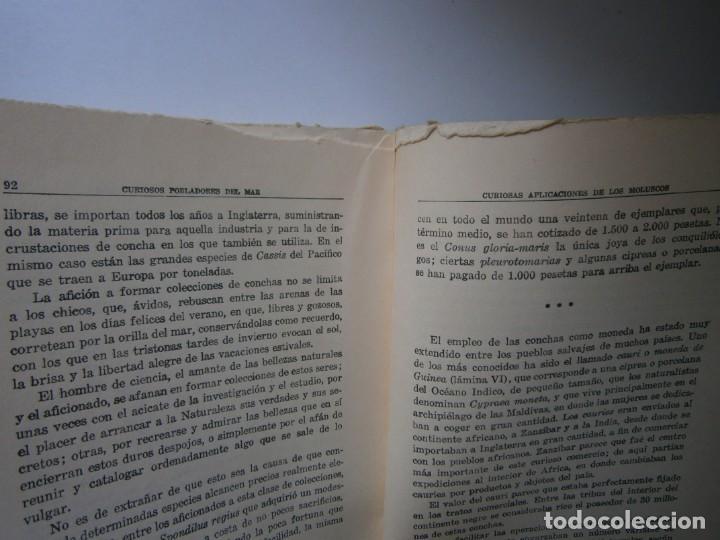 Libros de segunda mano: LOTE LIBROS DE LA NATURALEZA CRUSTACEOS POBLADORES DE MAR MUNDO ALADO MAMIFEROS MARINOS VIDA TIERRA - Foto 24 - 146870510