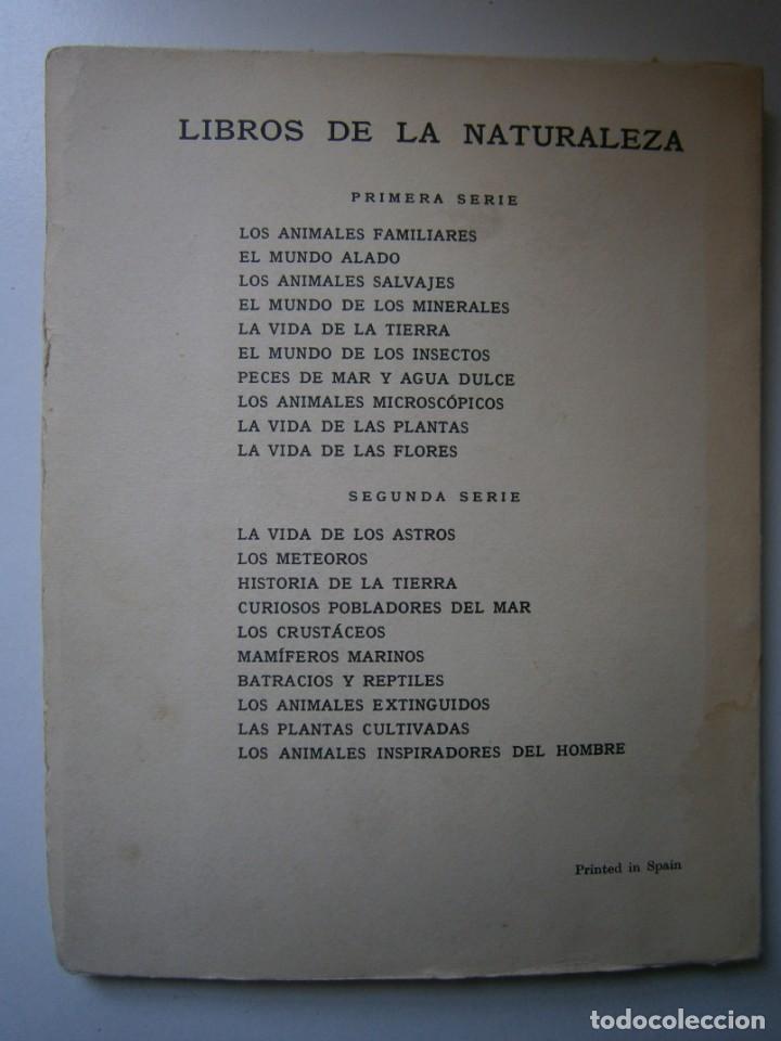 Libros de segunda mano: LOTE LIBROS DE LA NATURALEZA CRUSTACEOS POBLADORES DE MAR MUNDO ALADO MAMIFEROS MARINOS VIDA TIERRA - Foto 27 - 146870510