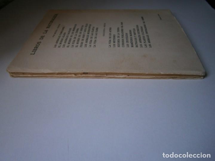 Libros de segunda mano: LOTE LIBROS DE LA NATURALEZA CRUSTACEOS POBLADORES DE MAR MUNDO ALADO MAMIFEROS MARINOS VIDA TIERRA - Foto 28 - 146870510