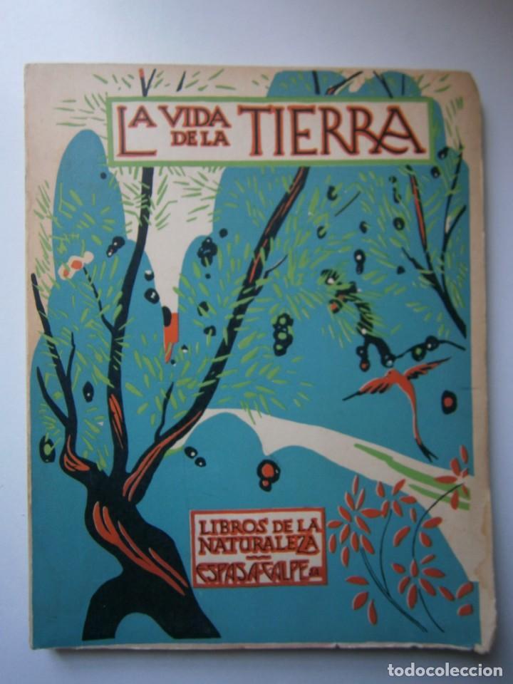 Libros de segunda mano: LOTE LIBROS DE LA NATURALEZA CRUSTACEOS POBLADORES DE MAR MUNDO ALADO MAMIFEROS MARINOS VIDA TIERRA - Foto 32 - 146870510