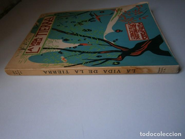 Libros de segunda mano: LOTE LIBROS DE LA NATURALEZA CRUSTACEOS POBLADORES DE MAR MUNDO ALADO MAMIFEROS MARINOS VIDA TIERRA - Foto 33 - 146870510