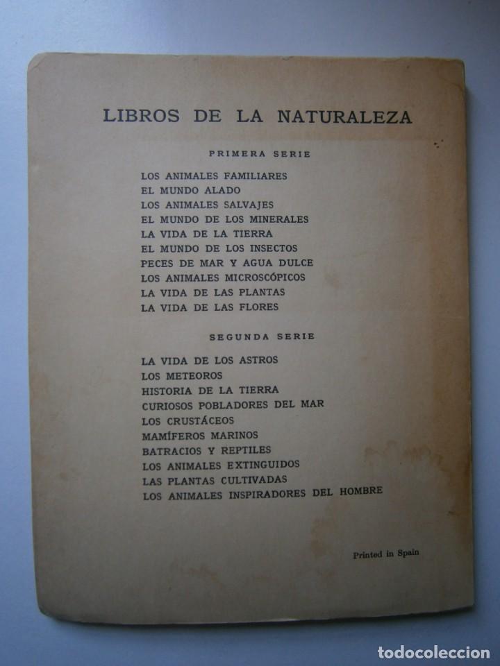 Libros de segunda mano: LOTE LIBROS DE LA NATURALEZA CRUSTACEOS POBLADORES DE MAR MUNDO ALADO MAMIFEROS MARINOS VIDA TIERRA - Foto 34 - 146870510