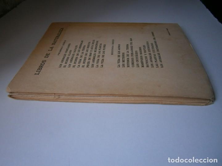 Libros de segunda mano: LOTE LIBROS DE LA NATURALEZA CRUSTACEOS POBLADORES DE MAR MUNDO ALADO MAMIFEROS MARINOS VIDA TIERRA - Foto 35 - 146870510
