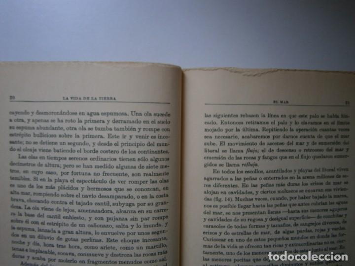 Libros de segunda mano: LOTE LIBROS DE LA NATURALEZA CRUSTACEOS POBLADORES DE MAR MUNDO ALADO MAMIFEROS MARINOS VIDA TIERRA - Foto 36 - 146870510