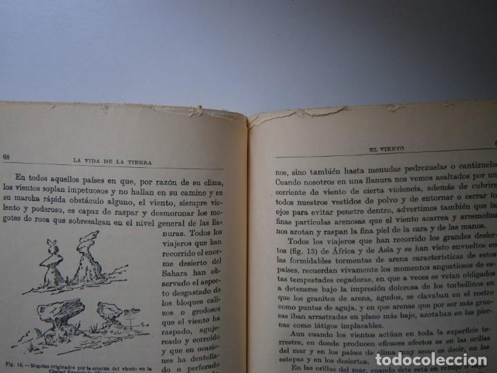 Libros de segunda mano: LOTE LIBROS DE LA NATURALEZA CRUSTACEOS POBLADORES DE MAR MUNDO ALADO MAMIFEROS MARINOS VIDA TIERRA - Foto 37 - 146870510