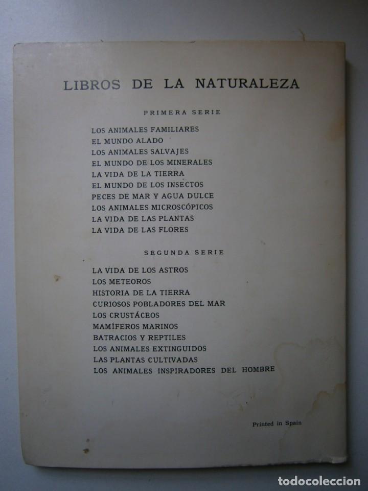 Libros de segunda mano: LOTE LIBROS DE LA NATURALEZA CRUSTACEOS POBLADORES DE MAR MUNDO ALADO MAMIFEROS MARINOS VIDA TIERRA - Foto 41 - 146870510