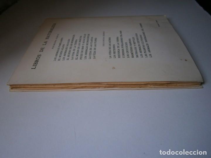 Libros de segunda mano: LOTE LIBROS DE LA NATURALEZA CRUSTACEOS POBLADORES DE MAR MUNDO ALADO MAMIFEROS MARINOS VIDA TIERRA - Foto 42 - 146870510