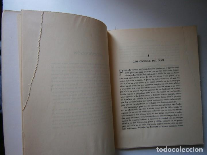 Libros de segunda mano: LOTE LIBROS DE LA NATURALEZA CRUSTACEOS POBLADORES DE MAR MUNDO ALADO MAMIFEROS MARINOS VIDA TIERRA - Foto 43 - 146870510