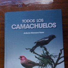 Libros de segunda mano: LIBRO TAPA DURA TODOS LOS CAMACHUELOS (ANTONIO MANZANO FERRER).. Lote 146939774