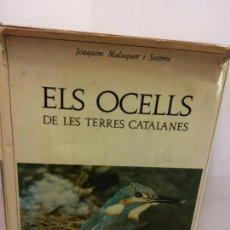 Libros de segunda mano: STQ.JOAQUIM MALUQUER.ELS OCELLS.EDT, BARCINO... Lote 147044294