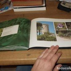 Libros de segunda mano: PALMA, PANORAMA EN VERD. AJUNTAMENT DE PALMA. FOTOGRAFÍAS NANDO ESTEVE. 2012. MALLORCA.. Lote 147581518
