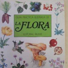 Libros de segunda mano: GUIA PRACTICA ILUSTRADA DE LA FLORA - ED.BLUME. Lote 138089398