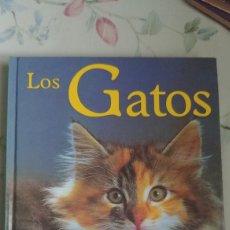 Libros de segunda mano: LOS GATOS. RAZAS, HIGIENE COMPORTAMIENTO. SUSAETA. Lote 147611684